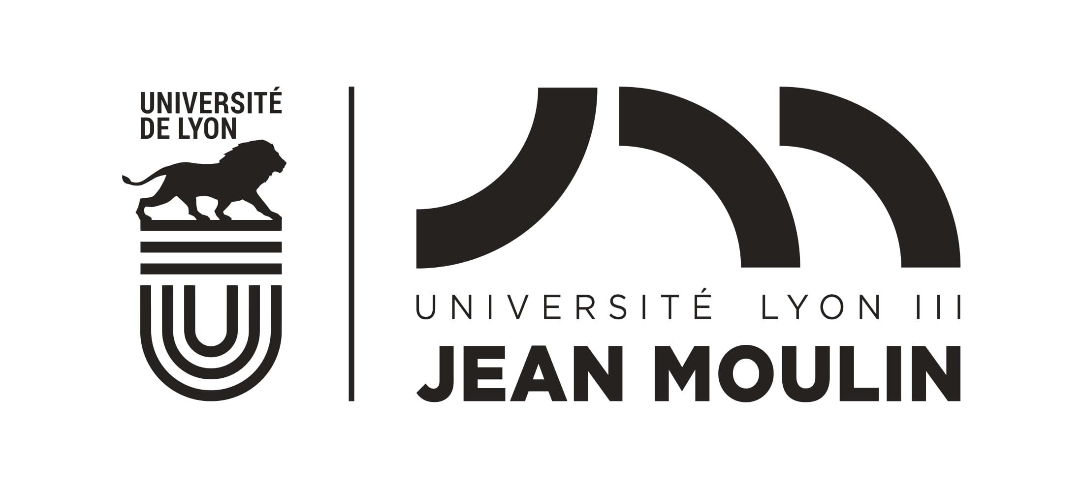 iae Lyon université
